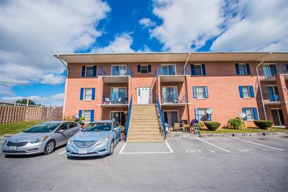 Apartment for rent in Pine Plaza, Winchester, VA, 22601