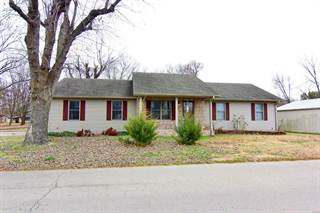 Single Family for sale in 310 South Tilley, Advance, MO, 63730