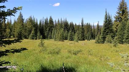 Lots And Land for sale in Lot 8 ACRES 3.94, Polaris, MT, 59746