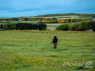 Farm And Agriculture for sale in 1418 Township Road 412, Alberta