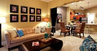 Apartment For Rent In Delante Apartments L2 Irving Tx 75039