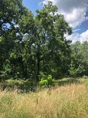 Single Family for sale in 13553 County Rd 186, Weaubleau, MO, 65774