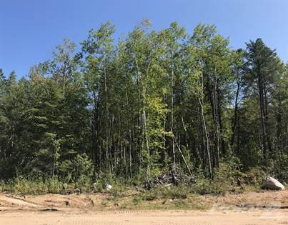 Residential Property for sale in 5 Bris Cove, Traverse Bay, North West Manitoba, Manitoba