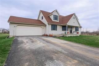 Single Family for sale in 225 N Doran Rd, Imlay City, MI, 48444