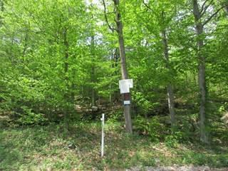 Land for sale in 0 Guerdat Road, Torrington, CT, 06790