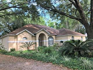 Single Family for sale in 15051 10th AVE, Trenton, FL, 32693