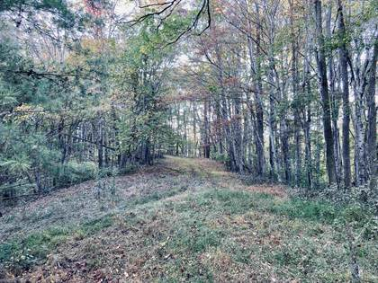 Lots And Land for sale in TBD Higgs Road NW, Willis, VA, 24380