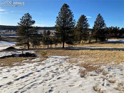 Lots And Land for sale in 186 Empire Road, Florissant, CO, 80816