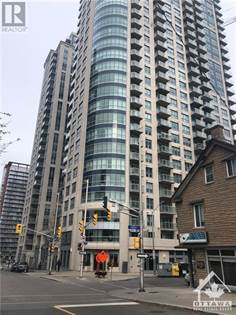 1 Bedroom Apartments For Rent In Sandy Hill Point2