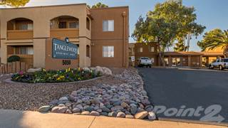 Apartment for rent in Tanglewood - One Bedroom, Tucson City, AZ, 85711