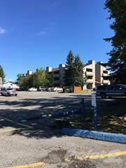 Apartment for rent in Independence Park Apartments - 2 Bed 1 Bath, Anchorage, AK, 99507
