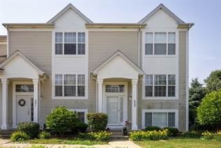 Townhouse for sale in 553 Silver Leaf Drive, Joliet, IL, 60431