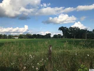 Farm And Agriculture for sale in Vl COOPER, Pleasant Lake, MI, 49272