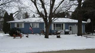 Single Family for sale in 417 Marion, Chadwick, IL, 61014