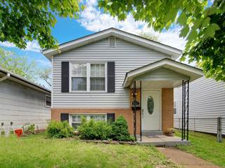 Single Family for sale in 5327 Nagel Ave, Saint Louis, MO, 63109