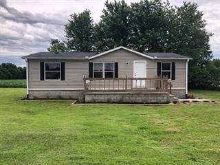 Single Family for sale in 360 Meadowlark Drive, Calhoun, KY, 42327