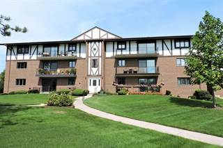 Condo for sale in 11018 South Theresa Circle 1A, Palos Hills, IL, 60465