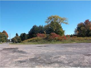 Land for sale in 3255 County Route 2, Pulaski, NY, 13142