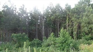 Land for sale in 701 W Gibson, Jasper, TX, 75951