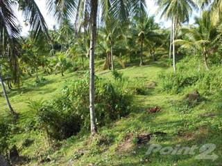 Residential Property for sale in Agri-Business General Luna, Siargao, Surigao, Philippines, Siargao Island, Surigao del Norte
