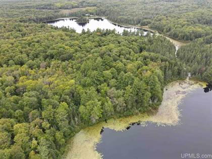 Lots And Land for sale in TBD#2 Grace Lake, Watersmeet, MI, 49969