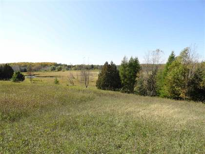 Lots And Land for sale in 20 Acres Co Rd 358 - G1, Stephenson, MI, 49887