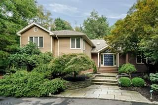 Single Family for sale in 1 CEDAR RIDGE DR, Chester Township, NJ, 07930