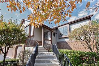 Condo for sale in 13312 Oak Hills Parkway 13312, Palos Heights, IL, 60463