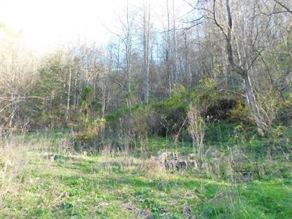 Lots And Land for sale in GRAPEVINE BRANCH ROAD, Iaeger, WV, 24844