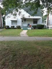 Single Family for sale in 22212 LYNDON Street, Detroit, MI, 48223
