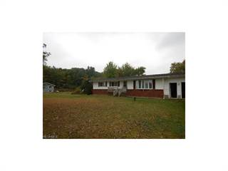 Single Family for sale in 4101 South Denmark Rd, Dorset, OH, 44032
