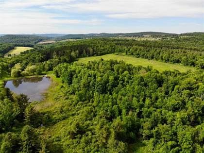 Farm And Agriculture for sale in SKUNKS MISERY ROAD, Pine Plains, NY, 12546