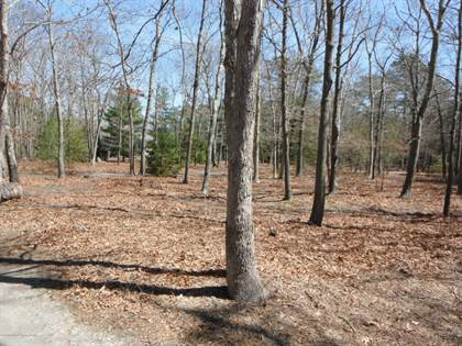 Lots And Land for sale in 124 Lakeview Drive, Jersey Shore, NJ, 08005