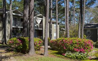 Apartment for rent in Windscape - Dogwood, Daphne, AL, 36526