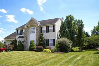 Single Family for sale in 8 SPRING MEADOW, Greater Belvidere, NJ, 07863