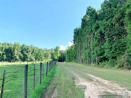 Lots And Land for sale in 420 Hwy 12, Sallis, MS, 39160