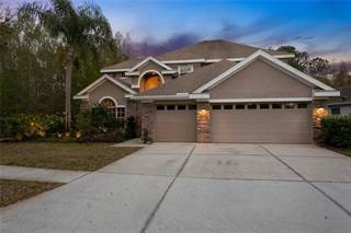 Single Family for sale in 11333 MINARET DRIVE, Westchase, FL, 33626