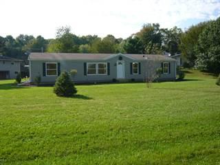Single Family for sale in 665 Mill Street, Concord, MI, 49237