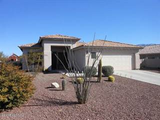 Houses & Apartments for Rent in Stone Canyon AZ - From $1,450 a ...
