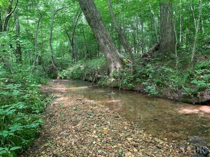 Lots And Land for sale in 0 Little Bear Lane, Spout Spring, VA, 24593