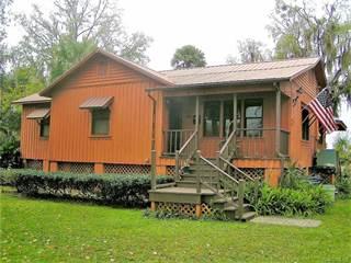 Single Family for sale in 1174 SE Kings Bay Drive, Crystal River, FL, 34429