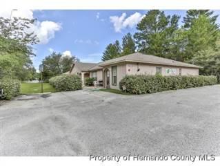 Multi-family Home for sale in 4077 Portillo Road, Spring Hill, FL, 34608