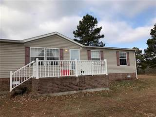 Residential Property for sale in 29 County Road 732, Gipsy, MO, 63787