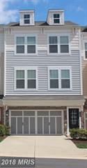 Single Family for sale in 42269 Jessica Farm Ter, Ashburn, VA, 20148