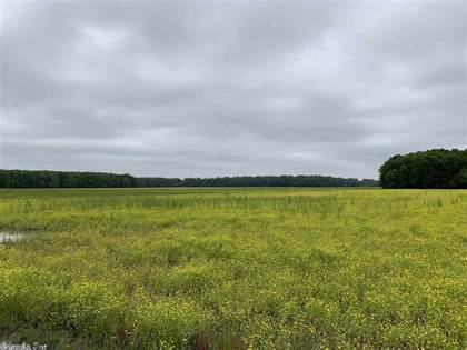 Farm And Agriculture for sale in No address available, Greater McGintytown, AR, 72047