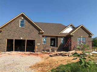 Single Family for sale in 247 Clay Starks Rd, Bowling Green, KY, 42170