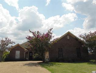 Single Family for rent in 255 CAMELOT WAY, Brandon, MS, 39047