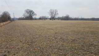 Land for sale in TBD CARY ROAD, California, MO, 65018