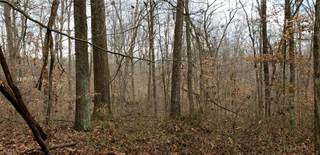 Land for sale in 17635 Chapel Rd, Newcomerstown, OH, 43832