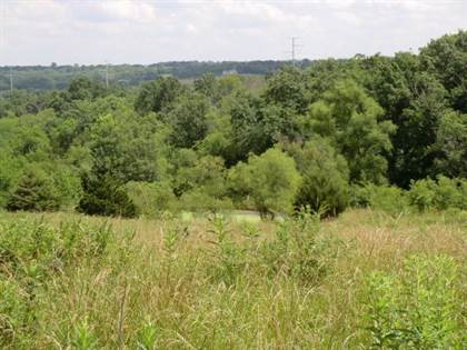 Lots And Land for sale in 36154 W 207th Street, Polo, MO, 64671